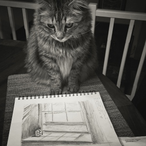 Back at home, Newt checks out my sketches.  Everybody's a critic.